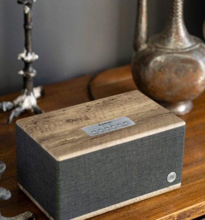 wireless-bluetooth-speaker-BT5-driftwood-lifestyle04-AudioPro